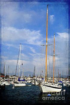 Sailboats - Newport Beach Harbor by Pamela Moran