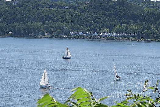 Sailboats on the St. Lawrence River by Brandy Woods
