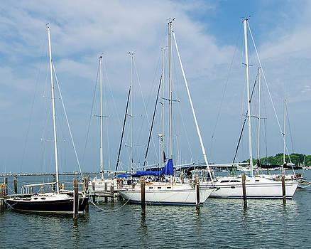 Sailboats by SG Atkinson