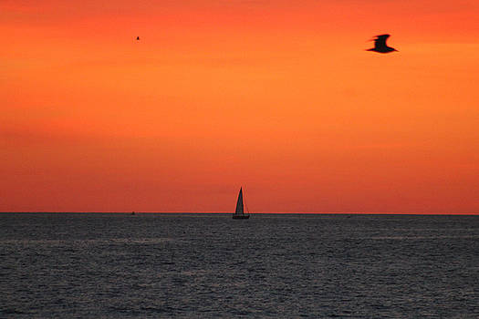 Sailing At Dawn by Robert Banach