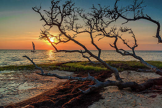 Sailing At Sunset by Eric Albright