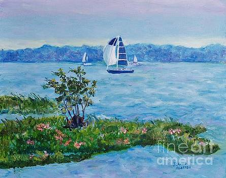 Sailing Away by Jeannie Allerton