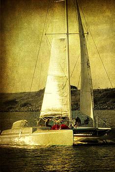 Susanne Van Hulst - Sailing away