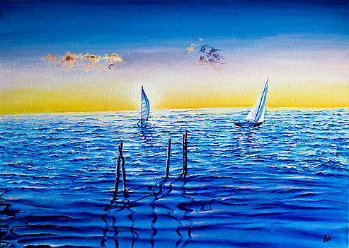 Sailing Boats by Michel Angelo Rossi