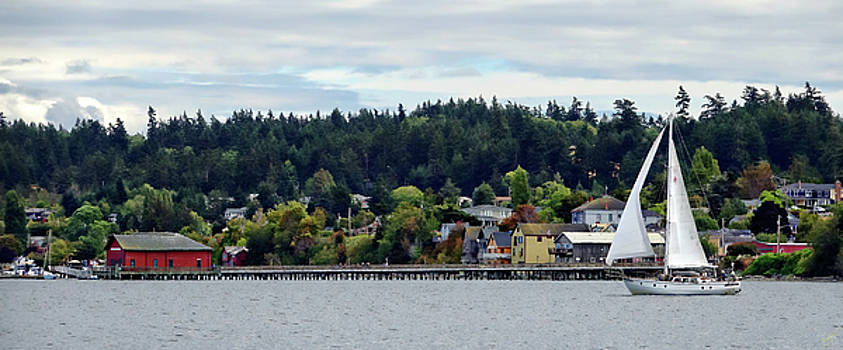 Sailing By Coupeville by Rick Lawler