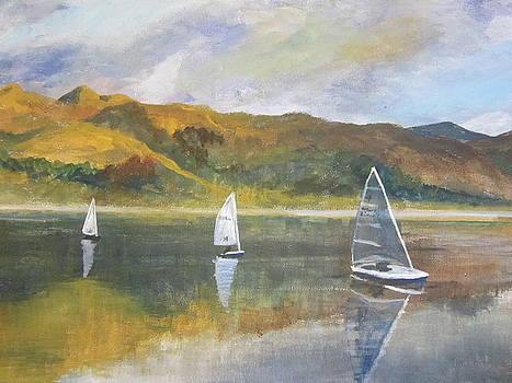 Sailing home from Attadale by Cindie Reiter