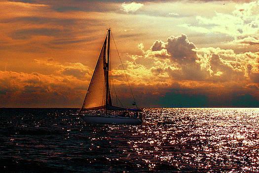 Sailing Home by Mim White
