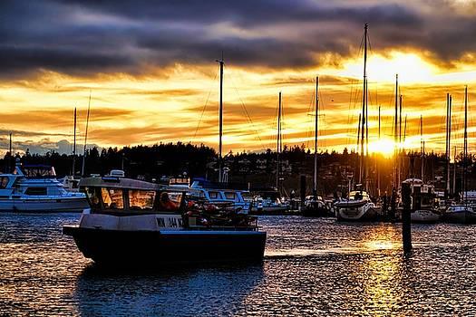 Sailing Home by Rick Lawler