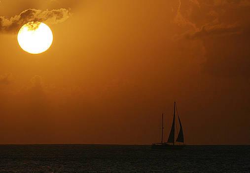 Sailing Home by Steve Vanhemelryck