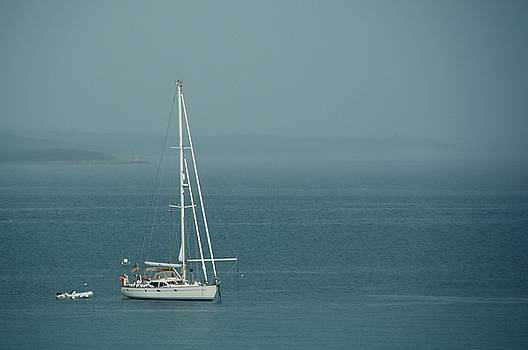 sailing in Rovinj Croatia by Phil Child