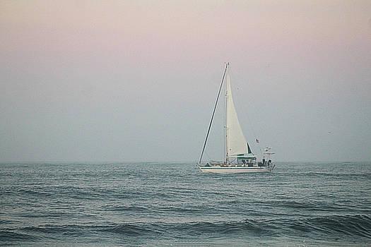 Sailing Into Dawn by Robert Banach