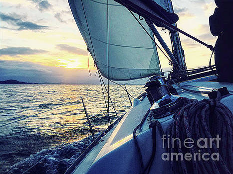 Sailing Into The Sunset by Phil Perkins