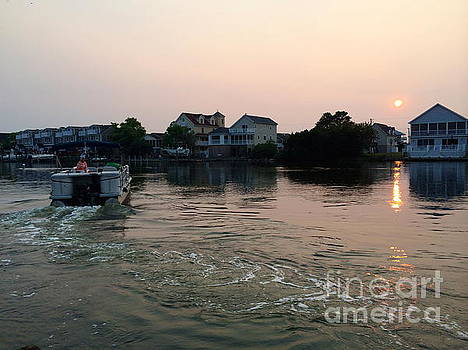 Sailing Off in Sunset  by Arianna Grott