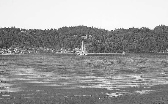 Sailing Off the Point by Gerald Mitchell