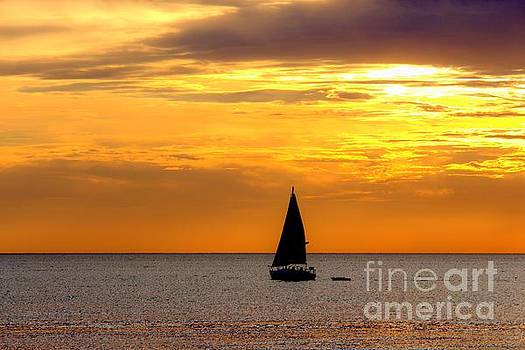 Sailing On A Paint Brush 3 by John Scatcherd