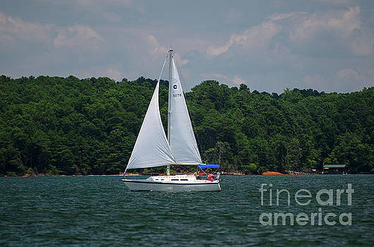 Sailing on Lake Hartwell by Dale Powell