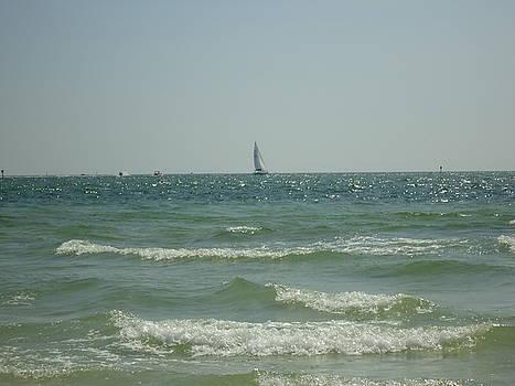 Sailing over the wavy Gulf by Debbie Wassmann