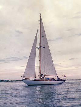 Sailing Pierra by Ryan McKee