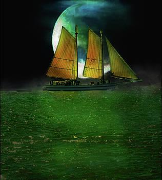 Sailing Safari  by Michael Cleere