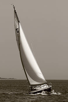 Sailing Sailboat Sloop Beating to Windward by Dustin K Ryan