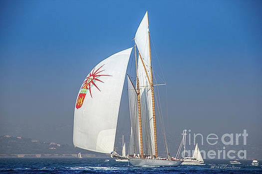Sailing Saint-Tropez by BIPHOTO Barna Ilona