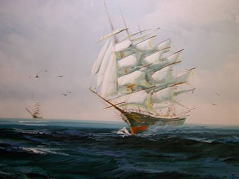 Sailing Ships the beauty of the sea by Robert E Gebler
