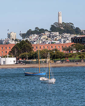 Sailing The San Francisco Bay by Andrew Hollen