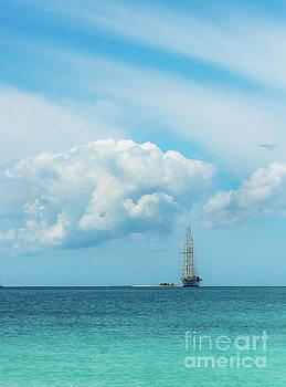 Sailing through the Clouds by Beth Riser