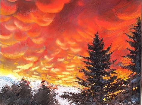 Sailors Delight by Sharon Wright