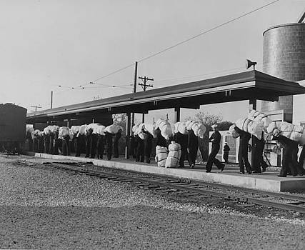 Chicago and North Western Historical Society - Sailors in Line at Train Stop