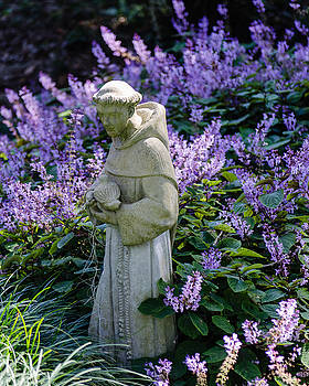 Saint Francis in Lavender by Stephanie Maatta Smith