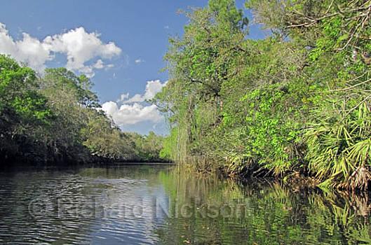 Saint Lucie River by Richard Nickson