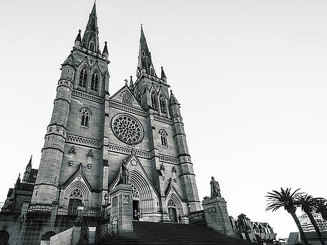 Saint Marys Cathedral in Sydney, Australia by Daniela Constantinescu
