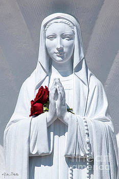 Julian Starks - Saint Virgin Mary Statue #1