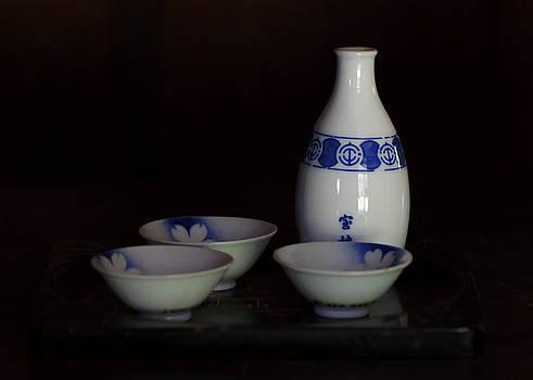 Susan Rissi Tregoning - Sake Set