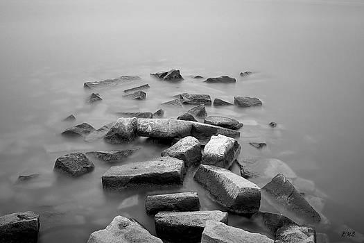 Sakonnet River I BW by David Gordon