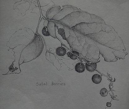Salal Berries by Catherine Robertson