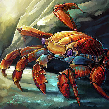 Sally Lightfoot Crab by Cass Womack