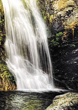 Salmon Creek Falls II by Lynn Andrews