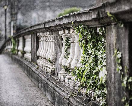 Salmon Weir Bridge in Galway Ireland by Lisa Russo