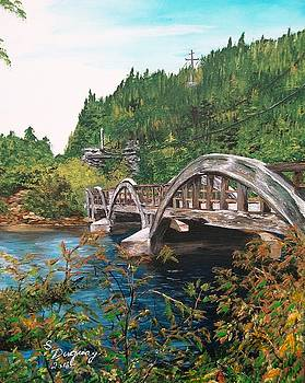 Salmonier River Newfoundland  by Sharon Duguay