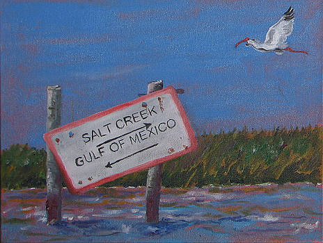 Salt Creek by Libby  Cagle