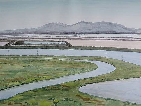 Salt Fields by Bethany Lee