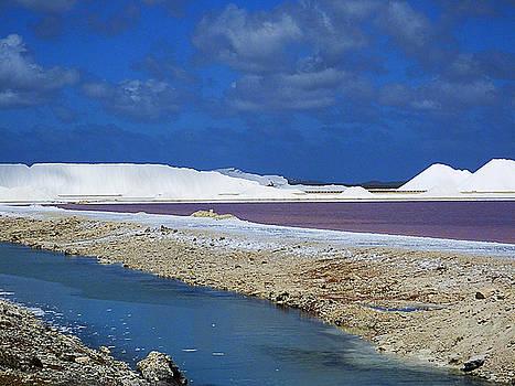 Salt Flats of Binaire by Bill Barber
