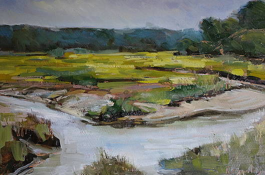 Salt Marsh Falmouth by James Reynolds