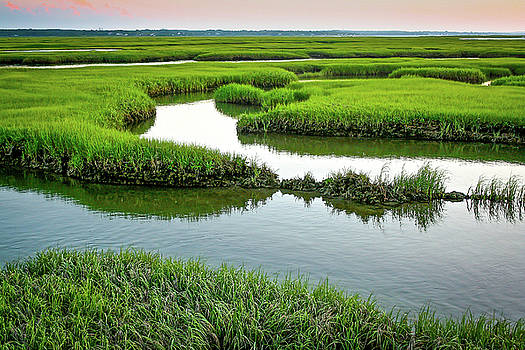Salt Marsh by Jim Gillen