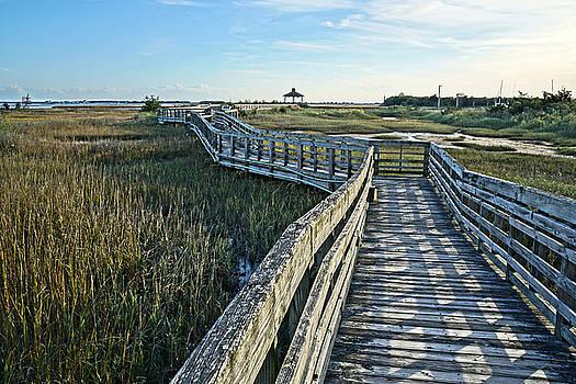 Salt Marsh Walk by Don Margulis