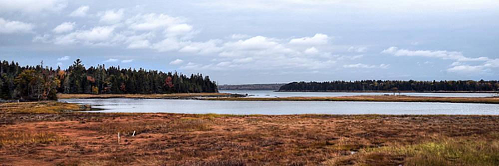 Salt Pond - Bar Harbor - Maine by Geoffrey Coelho