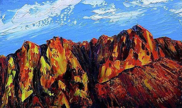 Salt River Canyon by Merrie Kapron Taverna