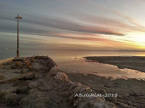 Salton Sea Sunset by April Bielefeldt